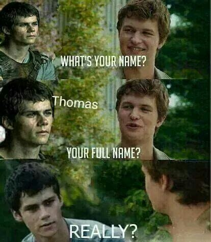 komentar film maze runner 2 1000 images about maze runner on pinterest