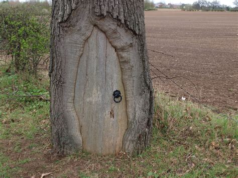 Doors For Trees by Ragged Robin S Nature Notes Middleton Lakes Nr And Quot