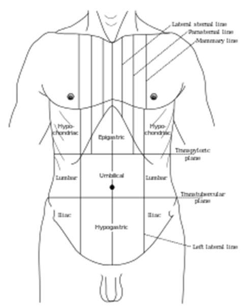 kribbeln im fuß beim liegen epigastrium wikivisually