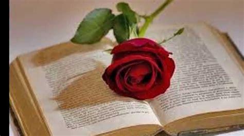 libro rosa de cendra dia de la rosa el libro y san jorge 23 de abril del 2015 youtube