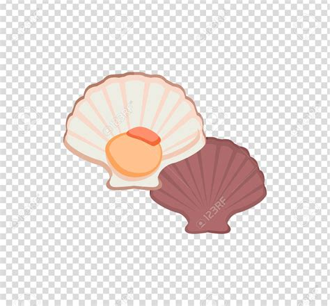 oyster color oyster colour clipart clipground