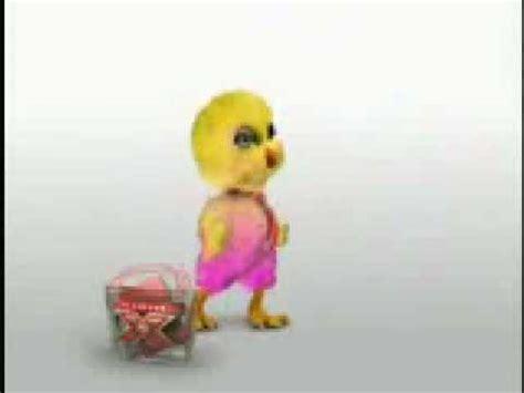 imagenes muy chistosas con movimiento tonos chistosos pollito rebelde youtube