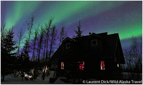northern lights vacation alaska wild alaska travel alaska northern lights tour archives