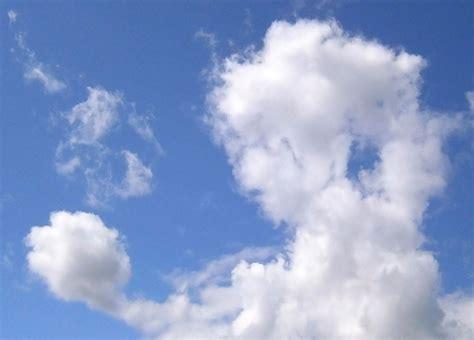 imagenes raras en las nubes nubes que parecen cosas una compilaci 243 n de la sociedad de
