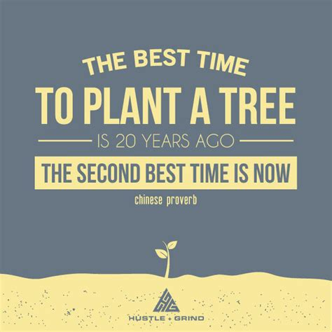 When Is The Best Time To Use A Detox Tea by The Best Time To Plant A Tree Is Twenty Years Ago The