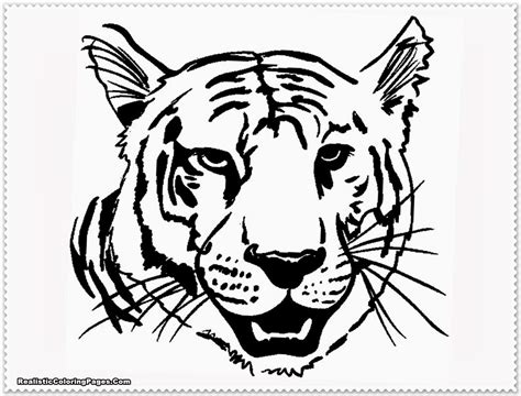 Realistic Tiger Coloring Pages Realistic Coloring Pages Tiger Coloring Book Pages