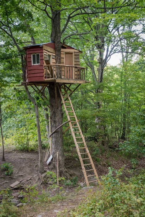 backyard treehouse for kids amazing backyard tree house getaways salter spiral stair
