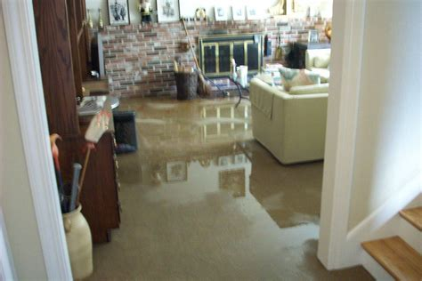 How To Dry A Flooded Basement Yourself, Basement Carpet