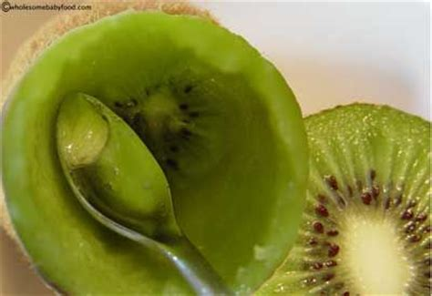 Introducing Baby Kiwi by When Can Baby Eat Kiwi Learn About Kiwi For Baby Food