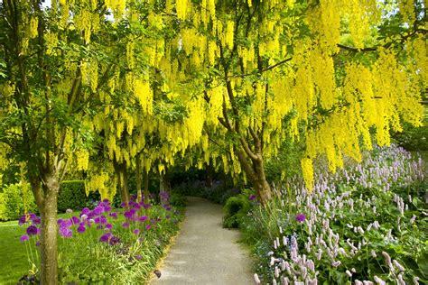Botanical Gardens Vancouver Vandusen Botanical Garden Vancouver Ruebarue