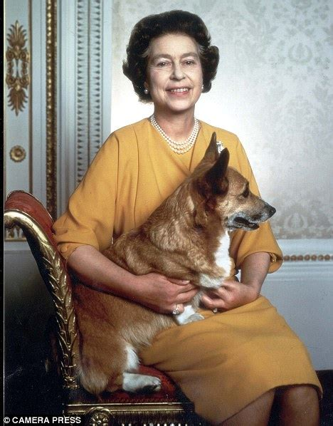 Queen Elizabeth Dog queen elizabeth s shock as corgi dogs are fed reheated
