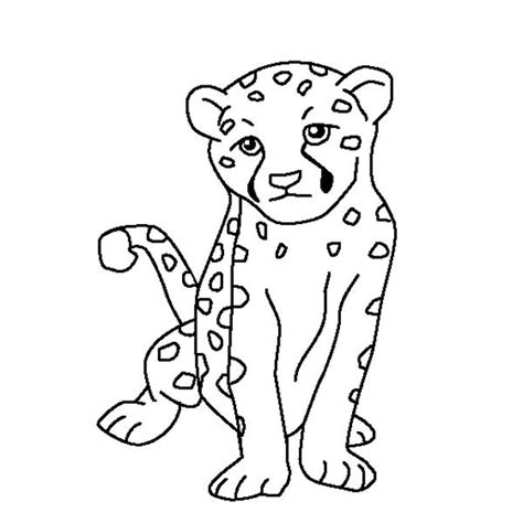 Cute Cheetah Coloring Page | cute baby cheetah colouring pages