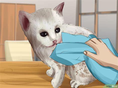 Obral Tas V Entino 3 Ruang gambar muka kucing dari kain flanel