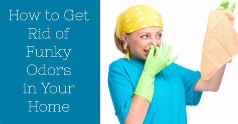 how to get rid of house odors how to get rid of funky odors in your home strategic living