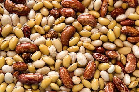 alimenti anticolesterolo quali sono i cibi che abbassano il colesterolo