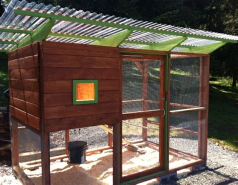 Coop Amazon Gift Card - send in photos of your chicken coop earn a 10 amazon gift card