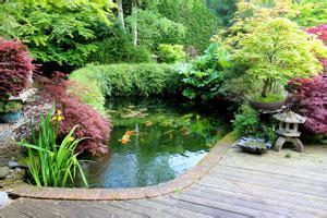 building koi ponds construction japanese garden design