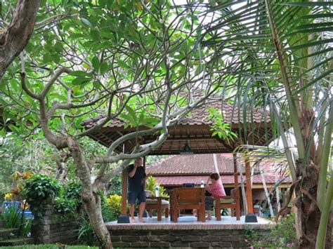 puri kelapa garden cottages lobby picture of puri kelapa garden cottages sanur