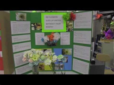 Lava Lamp Experiment With Salt by Science Fair Poster Boards Youtube