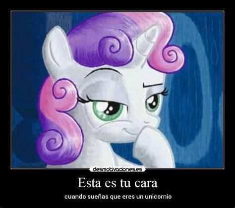 imagenes de unicornios de my little pony esta es tu cara desmotivaciones