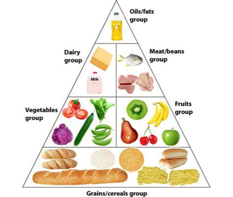 protein vitamins proteins carbohydrates vitamins minerals fiber