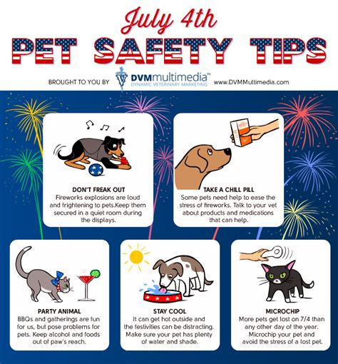 july 4th pet safety tips monroe veterinary service