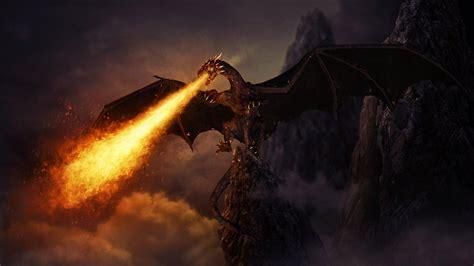 Black Dragon Wallpaper ? WeNeedFun