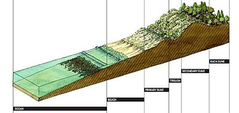 how much land in a section web mapping displaying cross sections on a web page