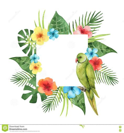 Colorful Tropical Plants - watercolor square frame from exotic leaves and parrot stock illustration image 74121548
