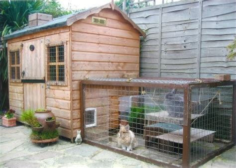 Rabbit Sheds by Hutch Rabbit Shed Related Keywords Suggestions Hutch