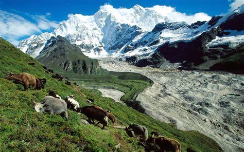 himalayas tibet tibet himalaya trekking team