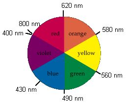 color wheel with wavelengths color and transition metal complexes