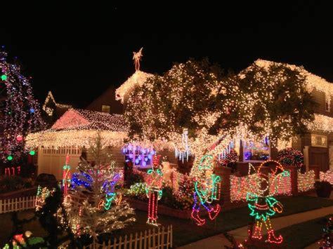 san carlos christmas lights eucalytus 1900 tree 482 photos 73 reviews trees 1900 block eucalyptus ave san