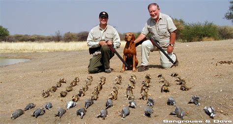 how to to hunt bird in africa