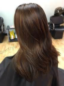 what color highlights for black hair best 25 chestnut highlights ideas on chestnut