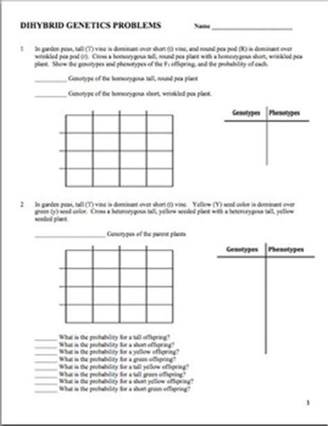 Dihybrid Cross Practice Worksheet