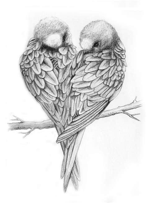 libro bird art drawing birds drawings of love birds love birds drawing love birds things to draw love