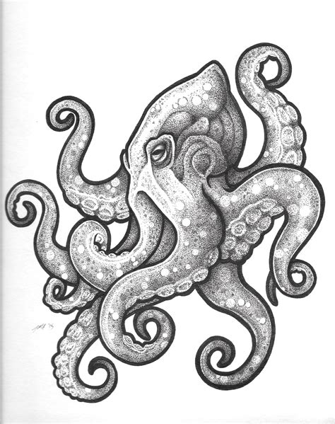 octopus tattoo design realistic octopus design www pixshark images