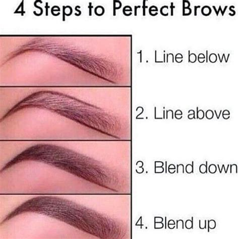 eyebrow guide template 25 best ideas about eyebrow makeup tips on