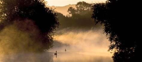 in the morning why steam fog rises from ponds in the morning mnn