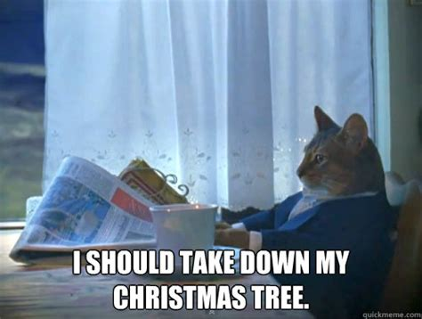 when do they take the tree down in nyc i should take my tree the one percent cat quickmeme