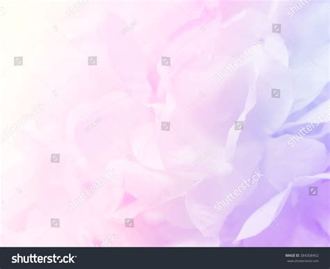 flower wallpaper effect beautiful flower background wallpaper made color stock