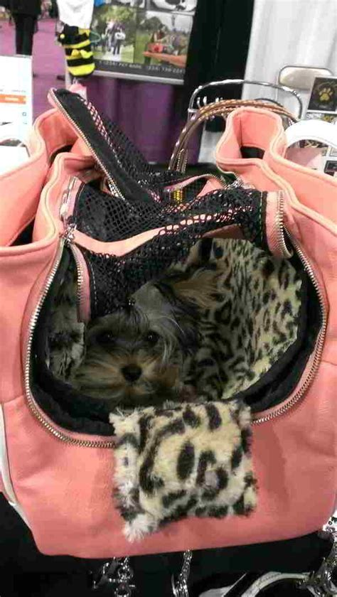 yorkie purse carrier yorkie carrier purse search yorkie yorkie purses and search