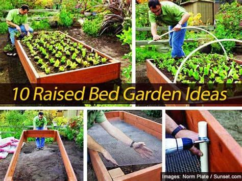 10 Raised Bed Garden Ideas Raised Garden Bed Planting Ideas