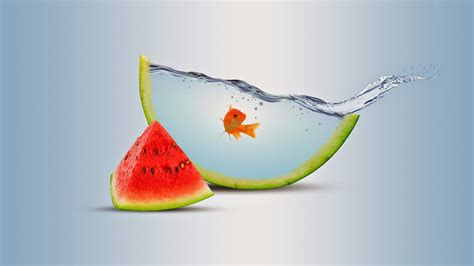 fruit water water fruit photomanipulation orange click3d