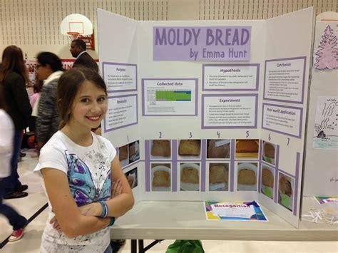 moldy bread science fair project mfawritingwebfccom