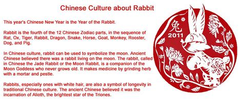 new year of rabbit meaning special all about the year of the rabbit