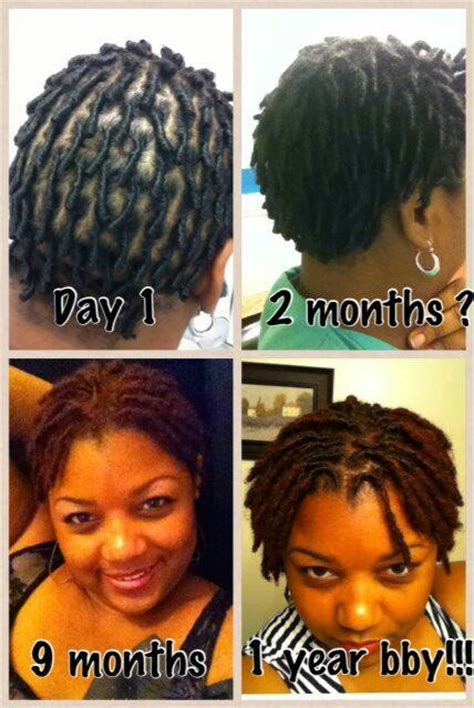 5 stages of locs dreads natural beauty salon spa 5 stages of locs dreads natural beauty salon spa 5