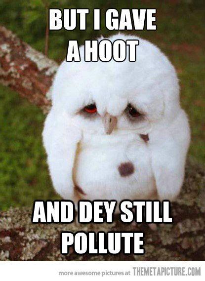 White Owl Meme - dinosaur funny sad meme picture