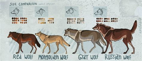 wolf size compared to dire wolf size compared to